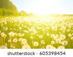 fluffy dandelion flower over... | Shutterstock . vector #605398454
