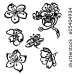 hand drawn peach blossom or... | Shutterstock .eps vector #605404934