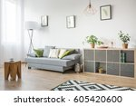 living room with grey couch ... | Shutterstock . vector #605420600
