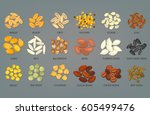 seeds of sunflower and pumpkin  ... | Shutterstock .eps vector #605499476