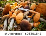 Fresh Forest Mushrooms On The...