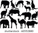 collection of wild animals  ... | Shutterstock .eps vector #60552880
