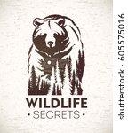 bear  vector illustration of a... | Shutterstock .eps vector #605575016