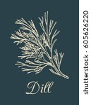 vector dill  illustration on... | Shutterstock .eps vector #605626220