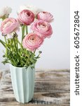 Small photo of Pink ranunculus flowers, copy space.