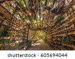 aoshima  japan   august 27 ... | Shutterstock . vector #605694044