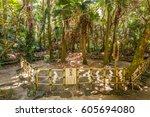 aoshima  japan   august 27 ... | Shutterstock . vector #605694080
