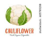 vector cauliflower . vegetable... | Shutterstock .eps vector #605785208