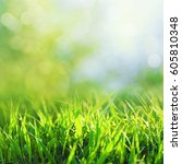 beauty seasonal backgrounds... | Shutterstock . vector #605810348