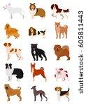 Stock vector medium dog breeds line art set 605811443