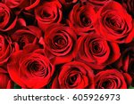 Stock photo red rose background 605926973