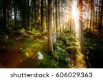 magical woods in the morning... | Shutterstock . vector #606029363