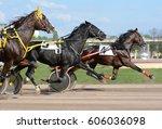 horses trotter breed in motion...   Shutterstock . vector #606036098