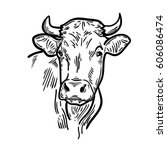cows head. hand drawn sketch in ... | Shutterstock .eps vector #606086474