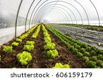 interior of an agricultural... | Shutterstock . vector #606159179