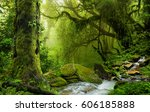 nepal jungle with river   Shutterstock . vector #606185888