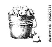 bucket of apples. hand drawn... | Shutterstock . vector #606207353