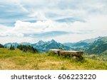 scenery alpine panorama of...   Shutterstock . vector #606223220