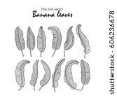 vector icons tropical banana... | Shutterstock .eps vector #606236678