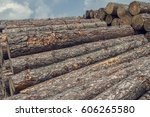 A Big Stack Of Wooden Logs...