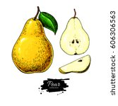 pear vector drawing. isolated... | Shutterstock .eps vector #606306563