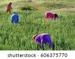 africa  morocco   moroccan... | Shutterstock . vector #606375770