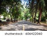corridor with pine | Shutterstock . vector #606422060