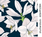 hippeastrum amaryllis lilly... | Shutterstock .eps vector #606491084
