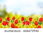 Bright And Colorful Spring...