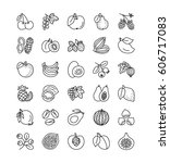 vector line icon set. fruits ... | Shutterstock .eps vector #606717083