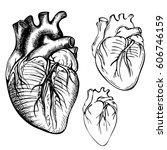 sketch ink human heart.... | Shutterstock . vector #606746159