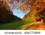 on the autumnal way | Shutterstock . vector #606772889