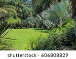 Palm Garden.