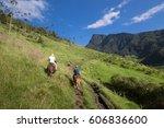 cocora valley  salento  colombia | Shutterstock . vector #606836600