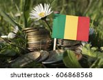 Small photo of Malian flag with stack of money coins with grass and flowers