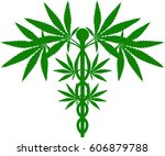 a medical marijuana plant... | Shutterstock . vector #606879788