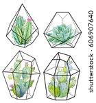 watercolor floral  cactus.... | Shutterstock . vector #606907640