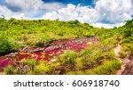 multicolored river in colombia  ... | Shutterstock . vector #606918740