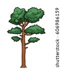 pine tree  isolated on white ...   Shutterstock .eps vector #606986159