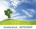 tree bonsai green leaf. sky... | Shutterstock . vector #607025849