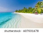 idyllic tropical beach... | Shutterstock . vector #607031678