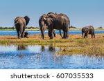 the oldest national park in...   Shutterstock . vector #607035533