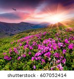 amazing summer sunrise with... | Shutterstock . vector #607052414