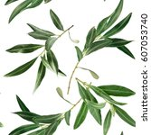 a pattern with olive tree... | Shutterstock . vector #607053740