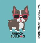 dog breed french bulldog. a... | Shutterstock .eps vector #607069796