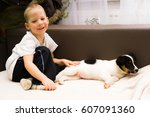 Stock photo little dog like similar to jack russell terrier 607091360