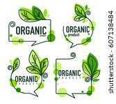 doodle organic leaves emblems ... | Shutterstock .eps vector #607138484