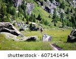 mountain walking in a beautiful ... | Shutterstock . vector #607141454