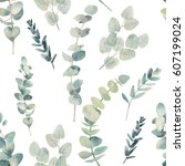 watercolor eucalyptus branches...   Shutterstock . vector #607199024