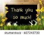 Sunny Narcissus  Easter Egg ...